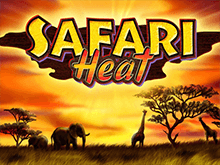 Автоматы Safari Heat в онлайн казино