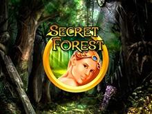 Secret Forest - играйте на деньги в онлайн казино
